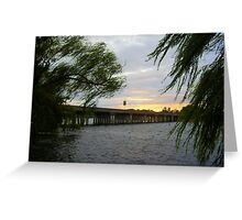 Weeping Willow View Greeting Card