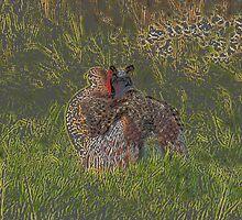 The Art of Love - Wild Pheasants by Alec Owen-Evans