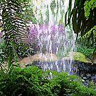 The Waterfall by John Thurgood