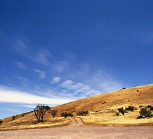 Flinders Ranges by rachn