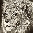ACEO Lion I by John Houle