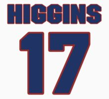 National Hockey player Paul Higgins jersey 17 by imsport