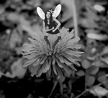 Fairy Funny... by Amy-lee Foley