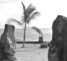Playa Bastian by lezvee