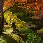 Japanese Oasis by Carrie Cole