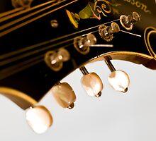 The Loar According to Derrington - Mandolin Perfection by Paul Thompson