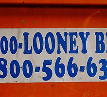 Looney Bins by Julie Marks