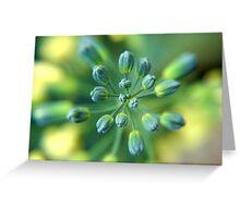 Broccoli Flower Greeting Card