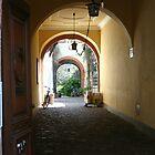 Heidelberg Hideaway by Ray Thacker