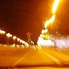 VIENNA CITY LIGHTS Nr.399 - Reichsbrücke by Wolfgang Pawlik