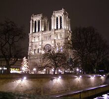 Notre Dame Cathedral by Lisa Carse