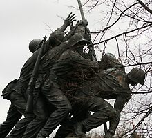Iwo Jima another view by Nicki Kenyon