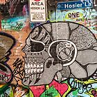 Hosier lane Melbourne by Pauline Tims