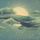 Sky Diver  by Terry  Fan