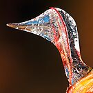 Goose Icicle(2) by robkal