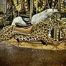 Carousel of the Wild by Jennifer Rhoades