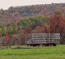 Typical fall on the farm  by vigor