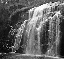 McKenzie Falls, the Grampians, Victoria by Roz McQuillan