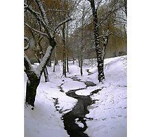 creek Photographic Print