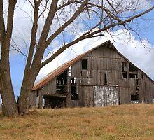 Buck's Barn #4 by Tony L. Callahan
