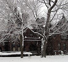 Sorg House Snow  by Tammy Soulliere