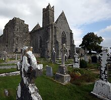 Quin Abbey, Shannon region, Ireland by damonmattson