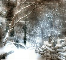 Winter Wonderland  by Elaine  Manley