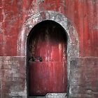 The Red Door by Heather Prince
