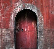 The Red Door by Heather Prince ( Hartkamp )