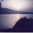 Lake Zurich by irene garratt