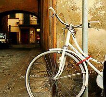 life. cycle. by Kelly Angard
