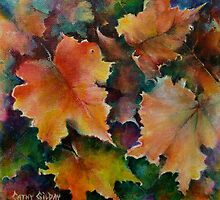 Seasons Shared by Cathy Gilday