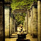 Halls of the Bayon by Murray Newham