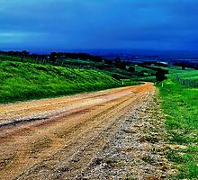 """""""Gully Road"""" by Phil Thomson IPA"""