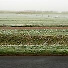 first snow by dominiquelandau