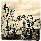 Phare en herbes II by Jean-Luc Rollier