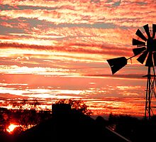 windmill sunrise by robert murray
