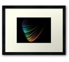 A Petal Of Life's Diversity Framed Print