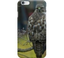 360 Fasinating Hawk iPhone Case/Skin