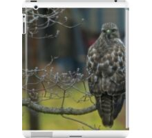 360 Fasinating Hawk iPad Case/Skin