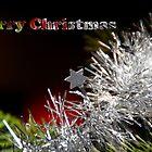 merry christmas by Frank Brüggemann