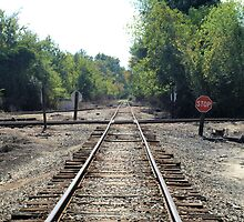Stop Train by William Helms