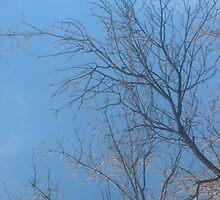 Tree reach by kanpai