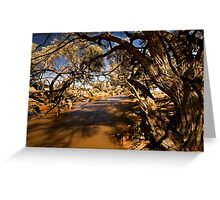 The Water Hole Greeting Card