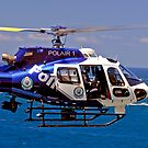 Polair 1 by DavidIori