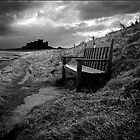 The Bench by ab1727