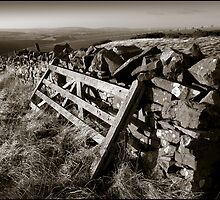 Old Gate, Scottish Borders by ab1727