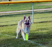 Im Ready to Play Momma! by Keala
