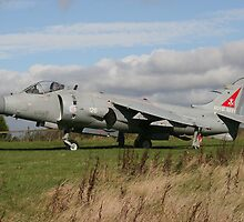 Sea Harrier by PhilEAF92