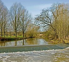 Weir on the River by Hertsman